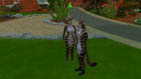 WCIF Feline Penis for Human Sims? - Request & Find - The