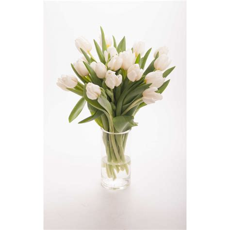 White Tulip Bouquet - Flowers Under $60 - Gifts | Flower Muse